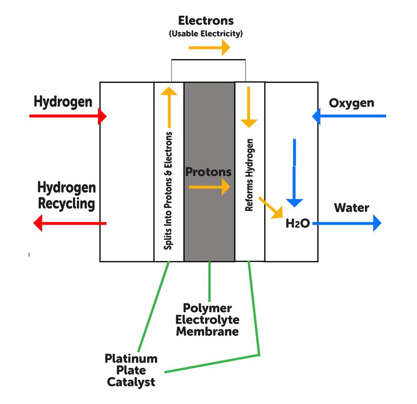 Hydrogen Car   Diagram of a Hydrogen Fuel Cell